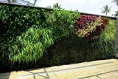 Green plan community forum