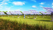 Solar farm approved for Freo