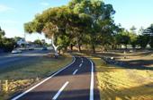 New cycling path along Carrington Street